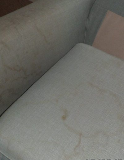 sofa before cleaning with water marks