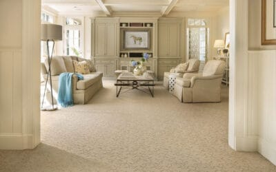 Rug Doctor Carpet Cleaning Machines